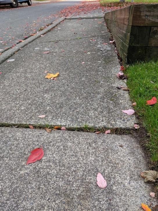 Cracked or uneven sidewalks